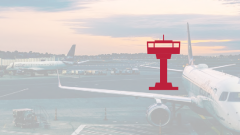 Adapting the DARWIN Guidelines for Air Traffic Management (ATM)